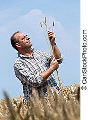 Farmer - Farmer in the cereal box.