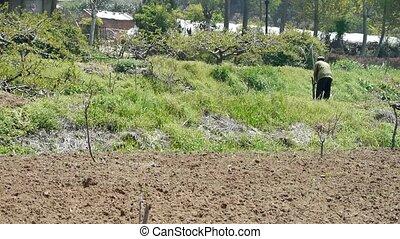 Farmer farming at arable land.