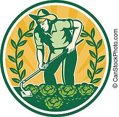 Farmer Gardener With Garden Hoe Cabbage - Illustration of a...