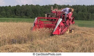 farmer harvest field
