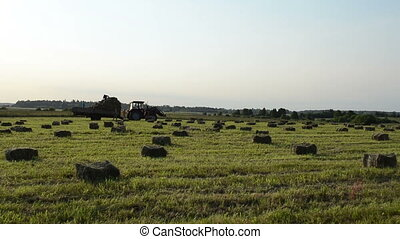farmer harvest hay bale - farmers load hay bales in rural...