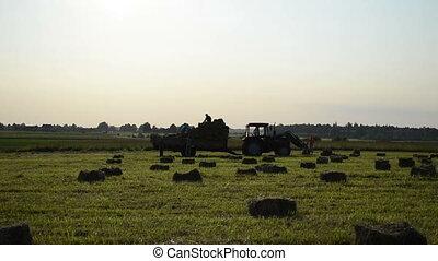 farmer harvest hay bale - farmers harvesting hay bales in...
