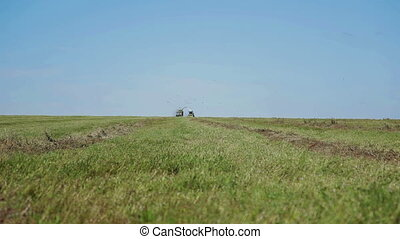 Farmer harvesting silage Combain in field
