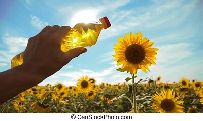 farmer holding a plastic bottle of sunflower oil in his hand field sunlight. slow motion video. blue lifestyle sky background agriculture concept sunflower oil bottle farming sunset field
