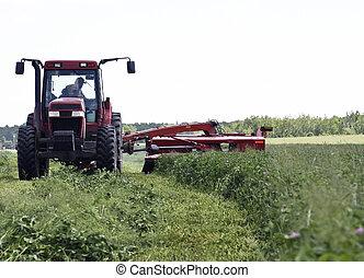 tractor cutting hay - farmer in a tractor cutting hay