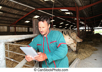 Farmer in barn using electronic tablet