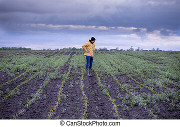 Farmer in corn field with weed