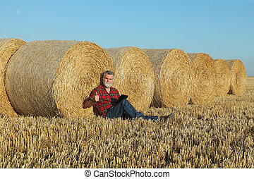 Farmer in wheat field after harvest using tablet