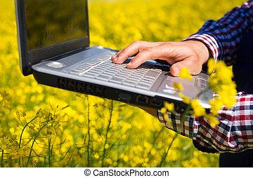 farmer inspect  canola field