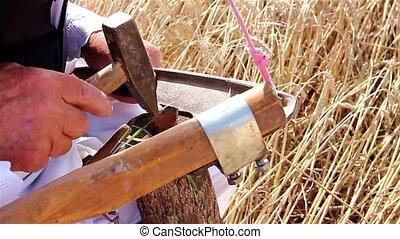 Farmer is preparing for harvest wit