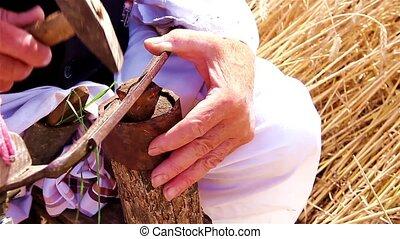 Farmer is preparing for harvest wit - Farmer will reap wheat...