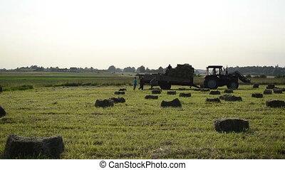 farmer load hay bale - farmer workers people carry load...