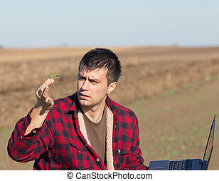 Farmer looking at seedling in the field