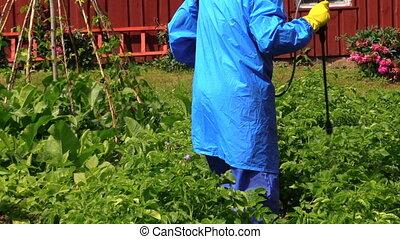 farmer man spray potato - Peasant farmer man in protective...