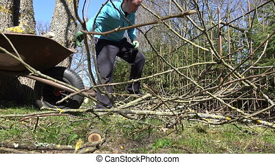 farmer man wood barrow - Farmer man load wood to barrow in...