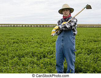 farmer wearing bib over alls and a straw hat with a hoe on his shoulder on a hay field