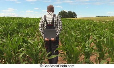 Farmer on corn field