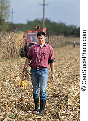 Farmer on corn field - Young farmer standing on field during...