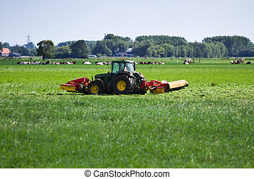 Farmer on tractor mowing grass in summer