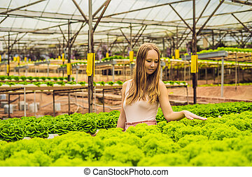 Farmer researching plant in hydroponic salad farm. Agriculture and scientist concept