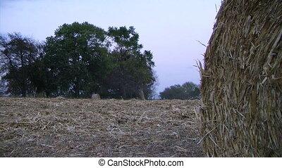 Farmer Round Baling Hay - Farmer round baling hay at dusk -...