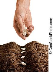 farmer seeding - hand seeding isolated over white background