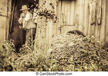 Farmer Shoveling the Horse Manure out of the Barn