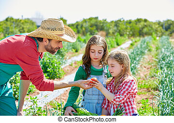 Farmer showing vegetables harvest to kid girls - Farmer man...