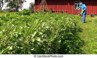 Farmer spray pesticide - Farmer in blue protective workwear ...