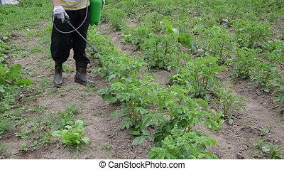farmer sprayer potato - a farmer spraying with pesticides...