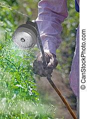 Farmer spraying fertilizer on crop