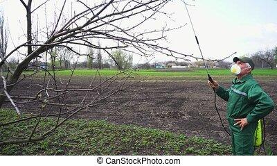 Farmer spraying tree with manual pesticide sprayer against ...