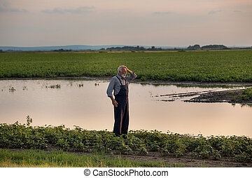 Farmer standing beside pond in agricultural field