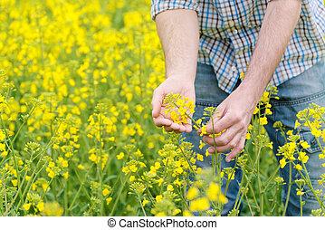 Farmer Standing in Rapeseed Field