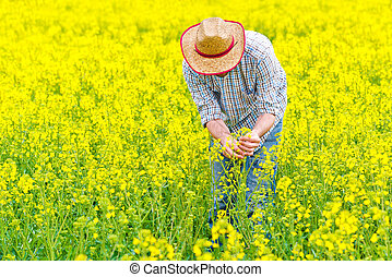 Farmer Standing in Rapeseed Field