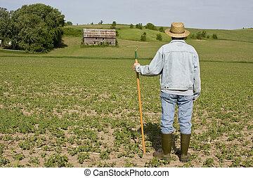 farmer standing on a field
