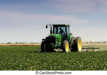 farmer, szántás, a, mező