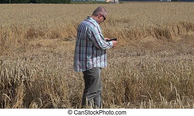 Farmer take pictures on destroyed cereal field