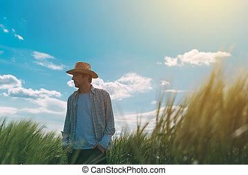 Farmer walking through a green wheat field