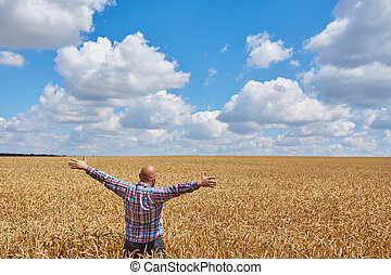 Farmer walking through a wheat field