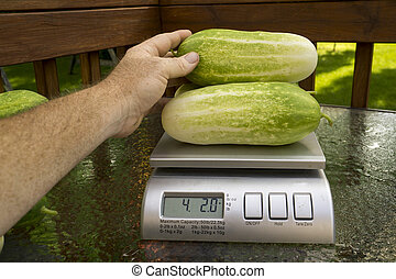 Farmer Weighing Produce For Customer