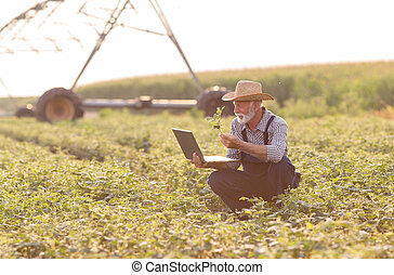 Farmer with laptop in front of irrigation system