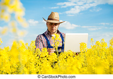 Farmer with laptop in the blooming rapeseed field