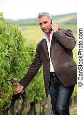 Farmer with mobile telephone stood in vineyard