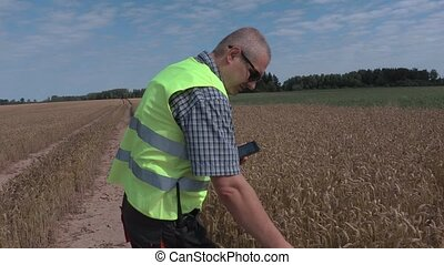 Farmer with tablet and cereal ear on the field