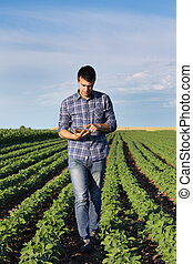 Farmer with tablet in soybean field - Young handsome...