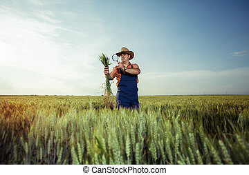 Farmer with wheat in hands