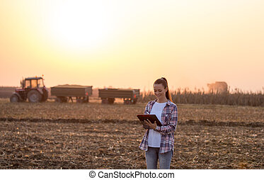 Farmer woman at corn harvest