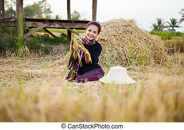 farmer woman holding a rice with the straw in field