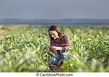Farmer woman in corn field